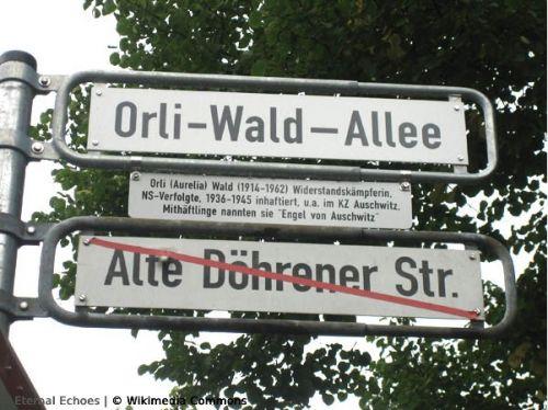 Orli-Wald-Allee